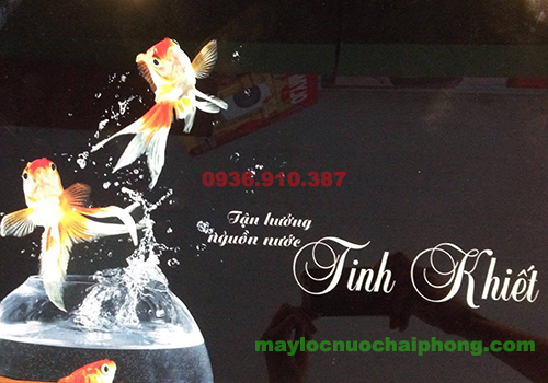 may-loc-nuoc-goldfish